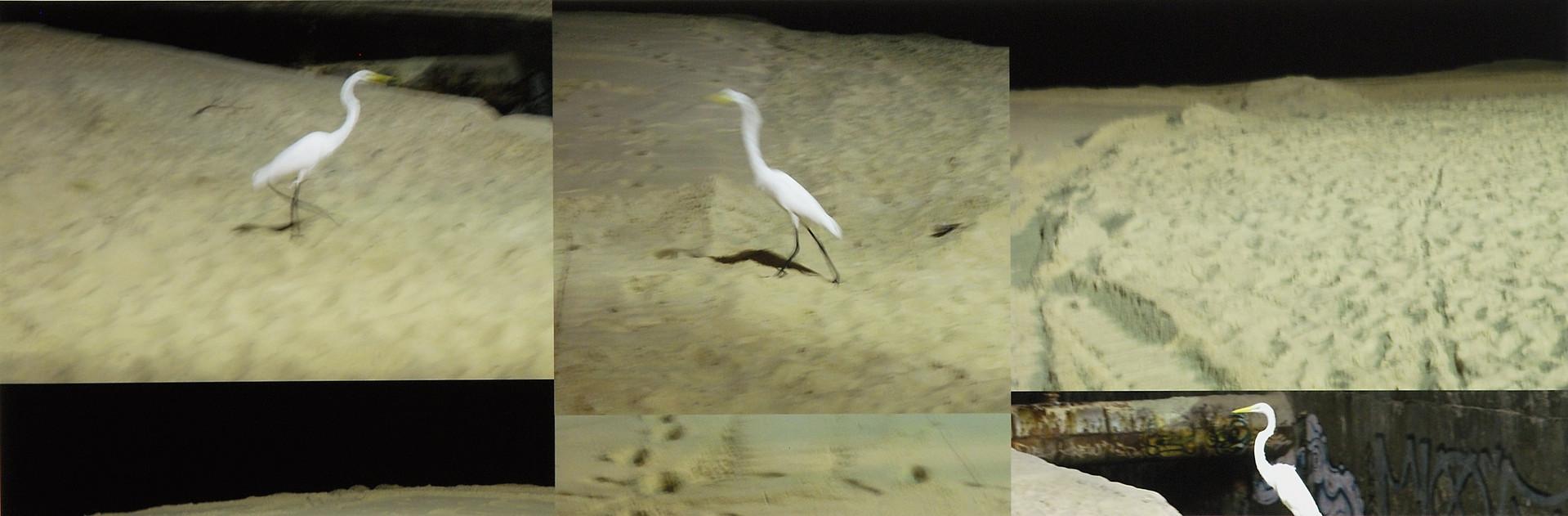 Sandscape, 2006