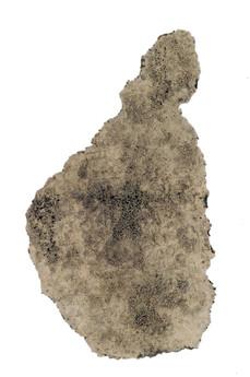 cuineiform P000589, 2006