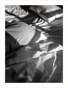 Nest(e)scapes.1221, 2008