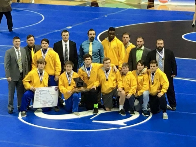Vikings finish 3rd at State