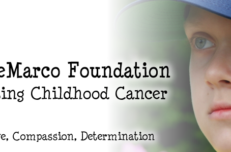 Praise for the Tyler DeMarco Foundation
