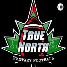 TNFF Logo.jpg