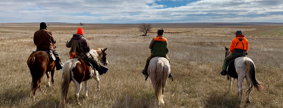 prairie chicken, sharp tail grouse, upland gamebird hunting, wingshootng, horseback hunting, english setter