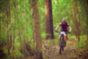 Chocolate Foot mountain bike skills coach Fiona Dick riding through the forest