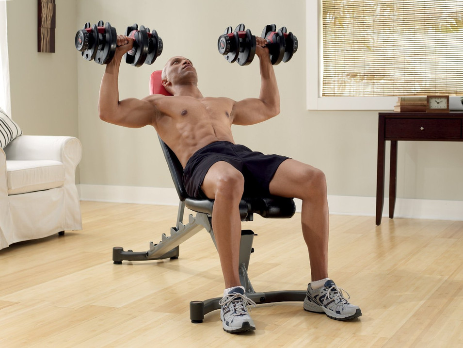 Dumbbells and Bench.jpg