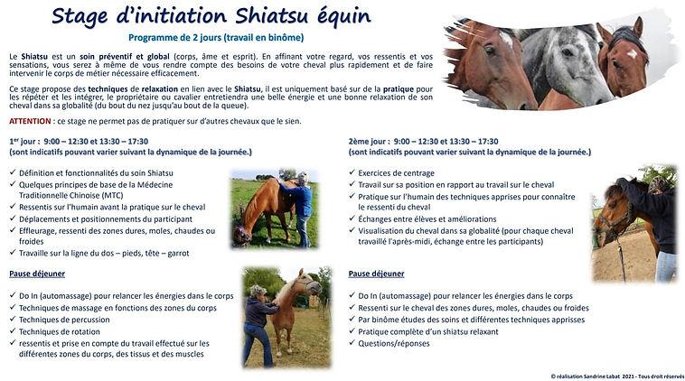 initiation shiatsu