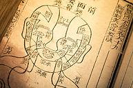 Psychologie chinoise et MTC / Centre de formation Ani-M'Âme