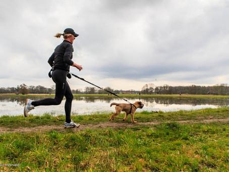 Comment courir avec son chien ?