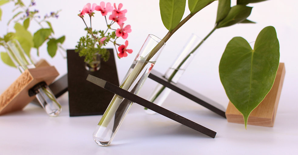 bohemica by shinshin studio tel aviv recycled wood testtube vase plants holder