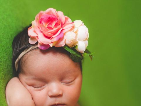 Jordan's Newborn Portraits