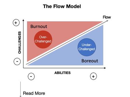 The Flow Model