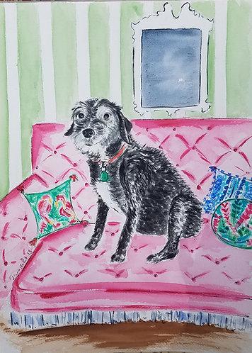 Custom Dog Illustration 12x18