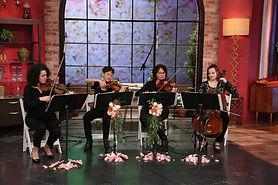 String Quartet Event