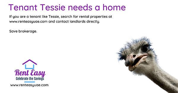 Landlord Longlegs seeks tenant (4).png