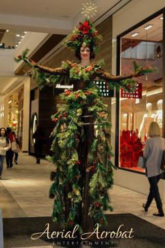AAE Stilt Walking Christmas Tree - IMG_4