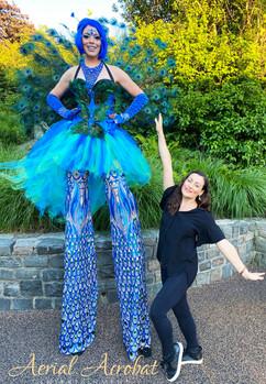 AAE Peacock Stilt Walker IMG_7907.jpg