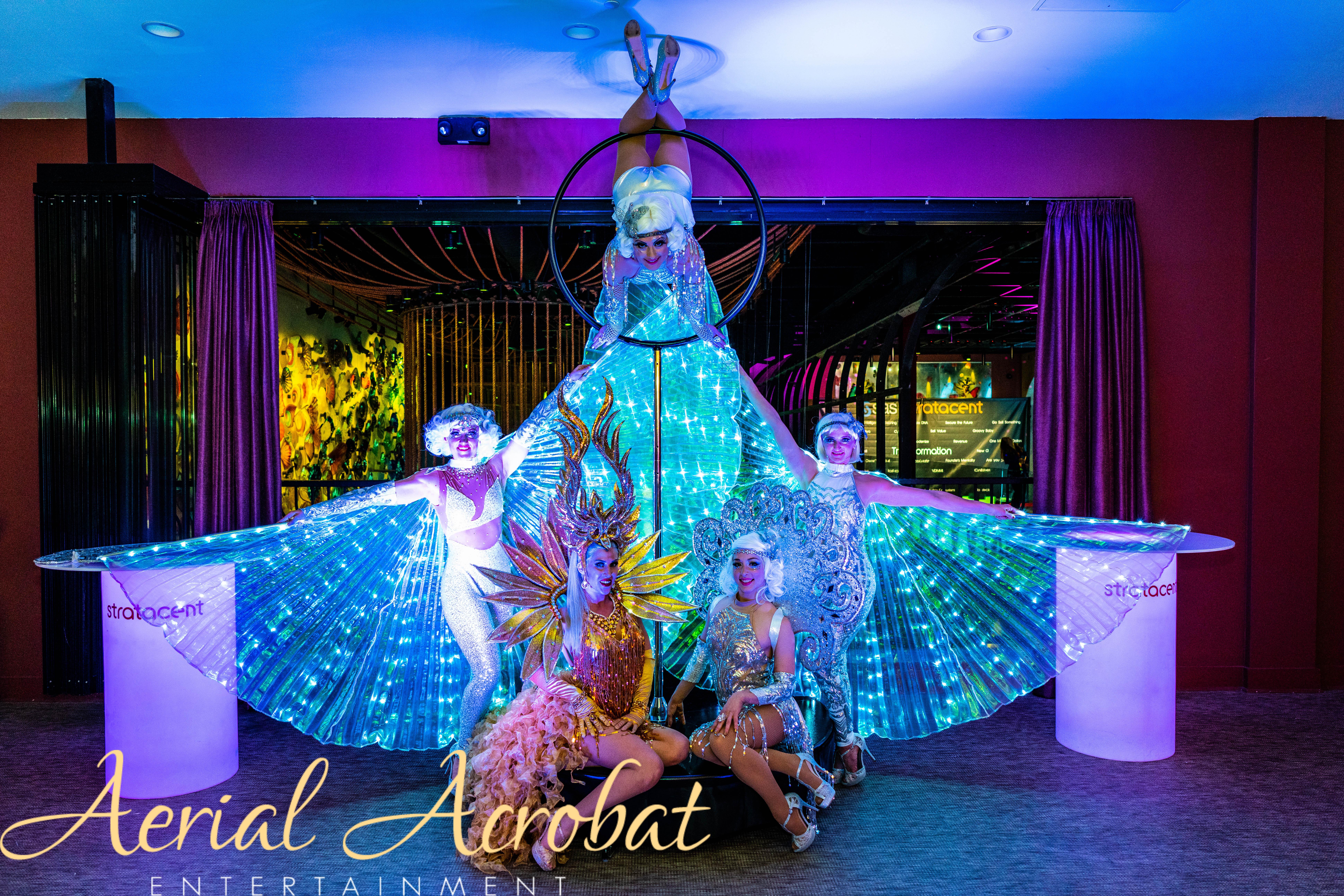 AAE Aerialist Dancer Acrobat