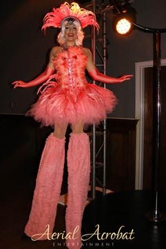 AAE Flamingo Stilts IMG_9820.jpg