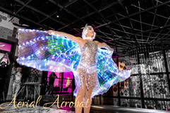 AAE Dancer.jpg
