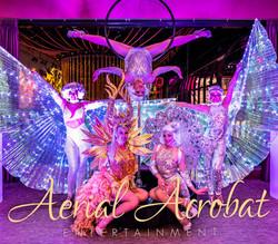 AAE daners lollipop aerailist showgirls
