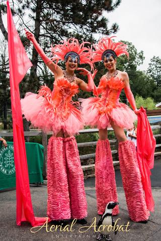 AAE Stilt Walking Flamingo - Flamingo (1