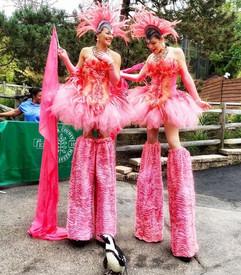 AAE Flamingo Stilt Walkers w:penguin .jp