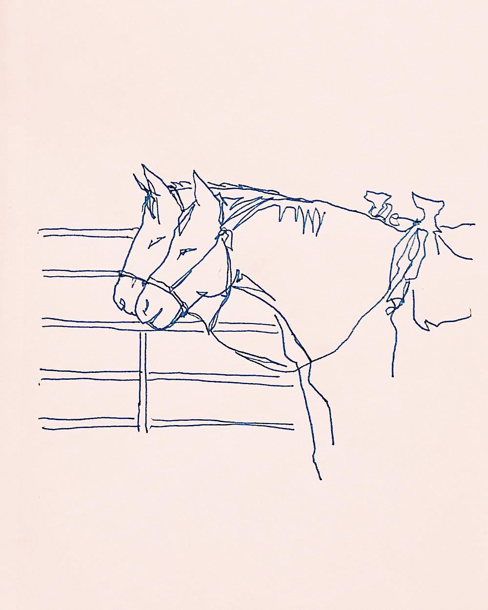 Horses Sketch Western