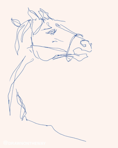 Horse rearing wild eyes contour drawing picasso