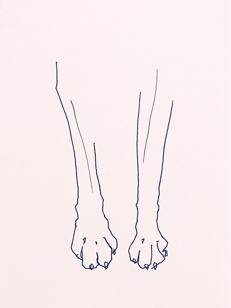 Great_Dane_Feet.jpg