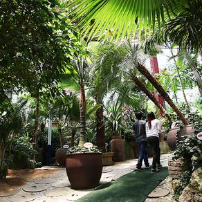 ศูนย์บำบัดสมุนไพร เกาะสมุนไพร (Herb Island Herb Healing Center)