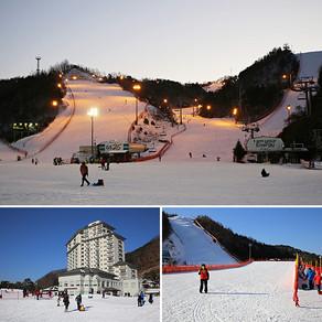 เอลิเชี่ยน คังชน สกีรีสอร์ท (Elysian Gangchon Ski Resort)