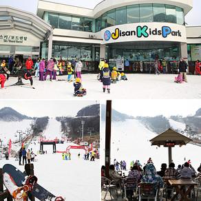 จีซาน สกีรีสอร์ทใกล้เมืองโซล (Jisan Forest Resort)