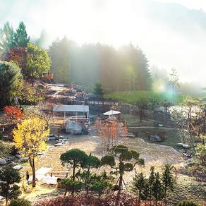ฮีลลิ่งโทเปีย ป่าพยองแบค (Pyeonbaeksoop Healingtopia)