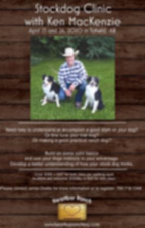 stockdog_clinicposter.jpg