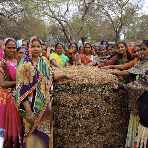 Shivansh Farming