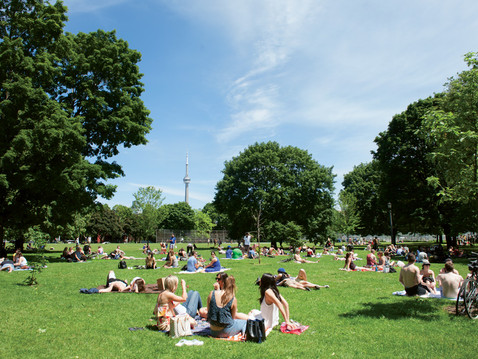 The Wellness Benefits of Urban Green Spaces