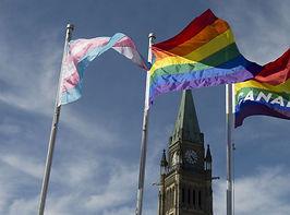 Rainbow Parliament.jpg
