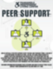 Virtual Peer Support