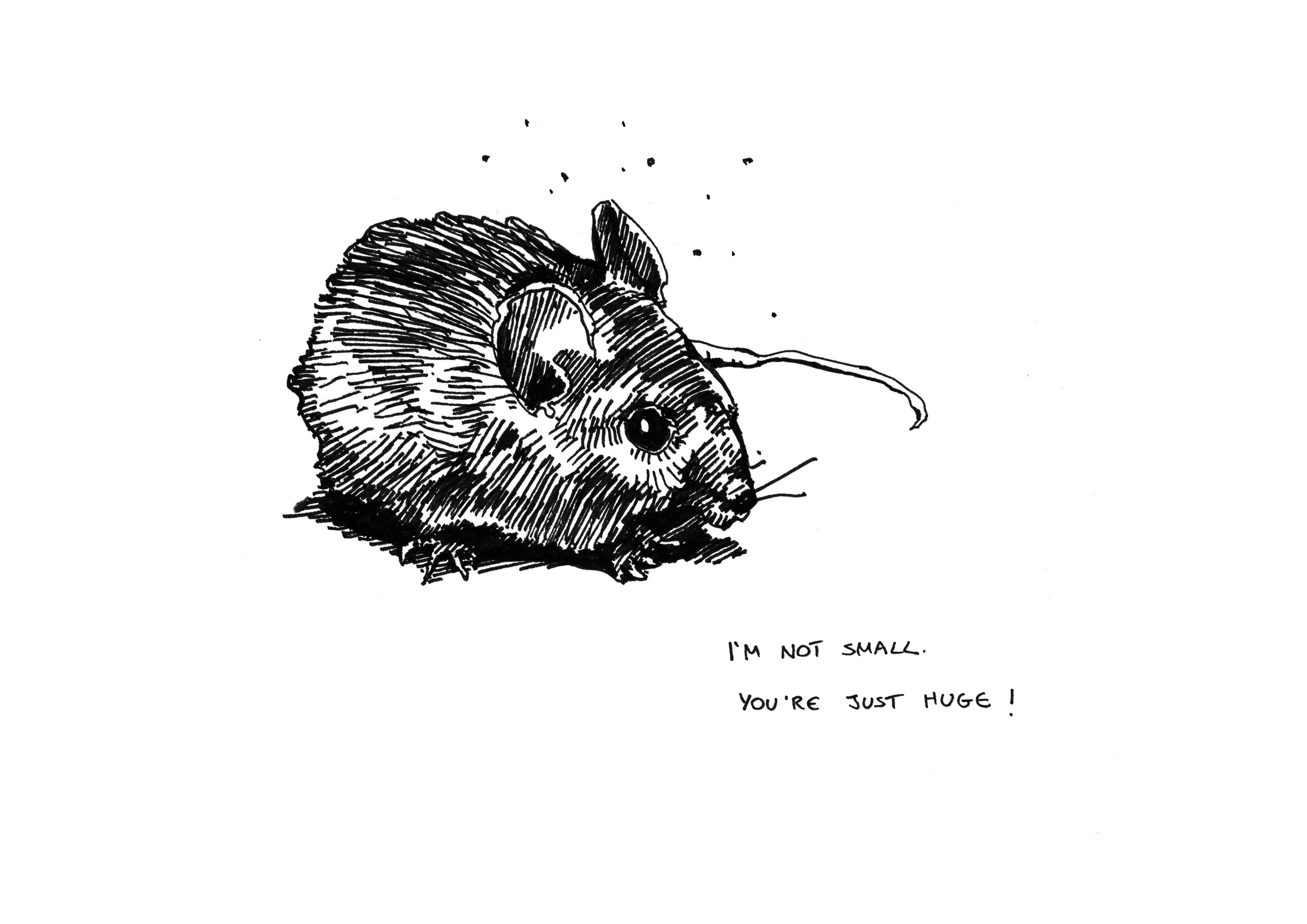 mouse_A4