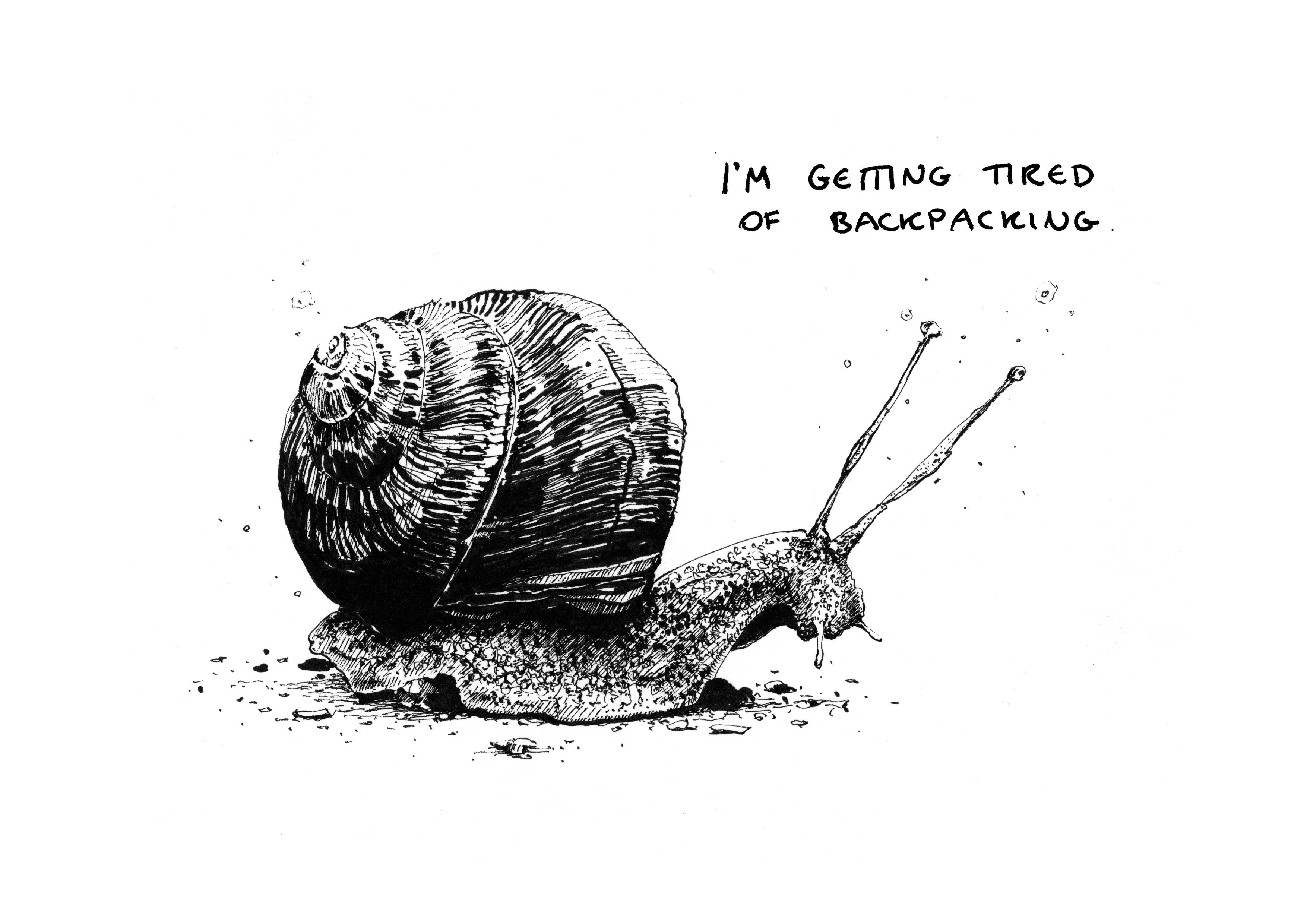 snail_03_a4