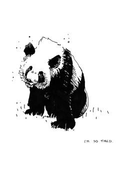 panda_A4