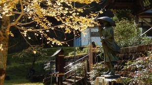 禅僧山TRAIL RUNNING & MEDITATIONは予定どおり開催します(参加者のみなさんに連絡)