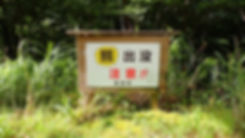 P72900369.jpg
