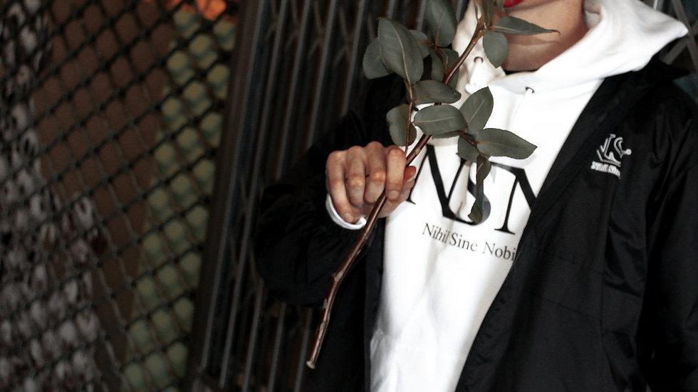 NSN+NSN