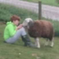 SHEEP-ReubenandWonky.jpg