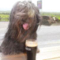 DONALD-ireland2012 210.jpg