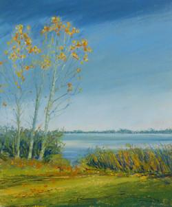 Autumn Lights, Grafham Water
