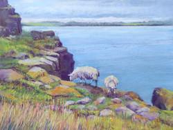 On the Edge, Northumbria