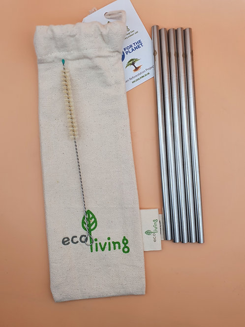 5 Reusable Stainless Steel Drinking Straws, ecoLiving