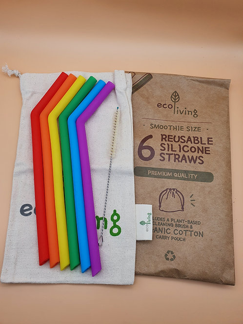6 Reusable Rainbow-coloured Silicone SMOOTHIE Straws + Brush, ecoLiving